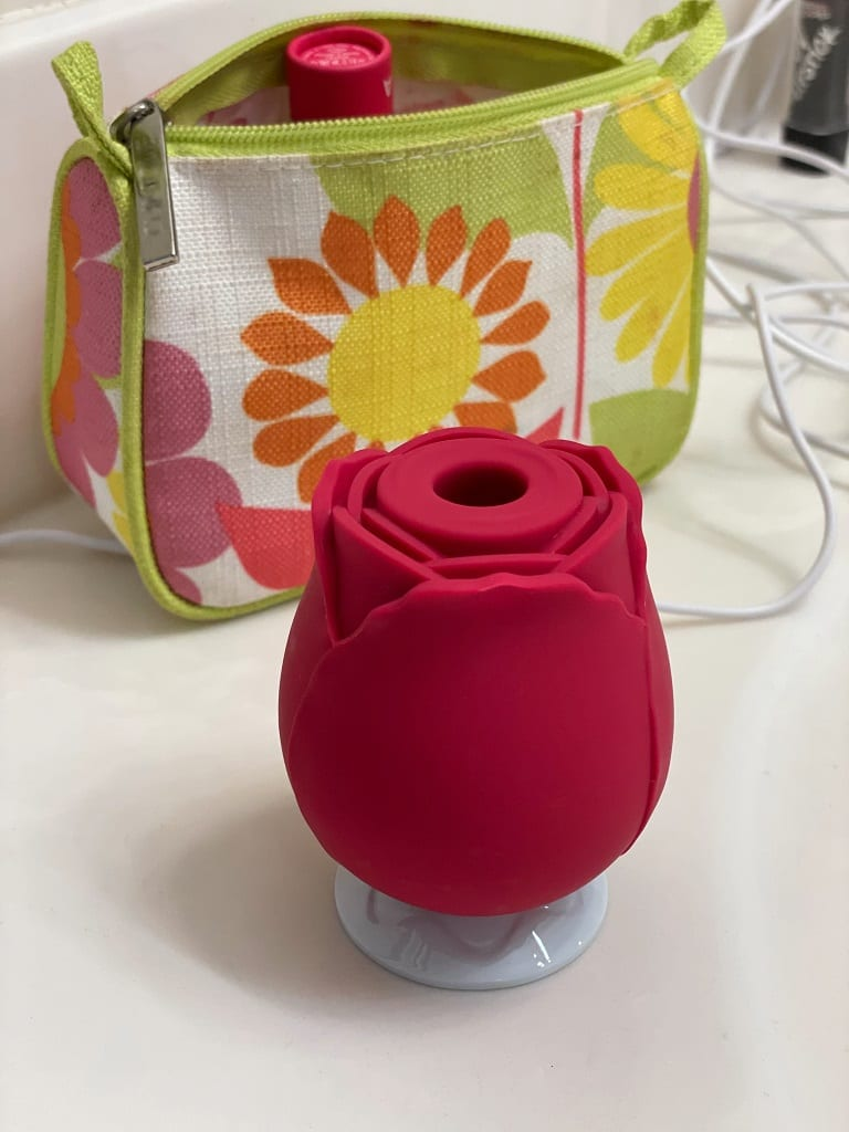 NS Novelties Inya Rose vibrator charging base how to charge