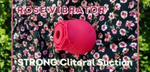 Rose vibrator by NS Inya, clitoral suction vibe sex toy review
